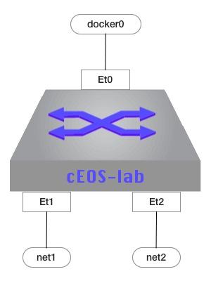 cEOS-lab interfaces