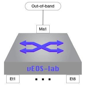 vEOS-lab interfaces